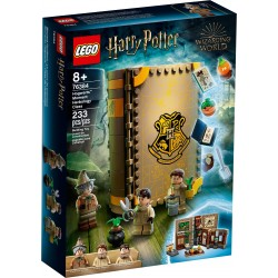 76384 - Harry Potter TM - Moment Hogwarts: Lectia de ierbologie